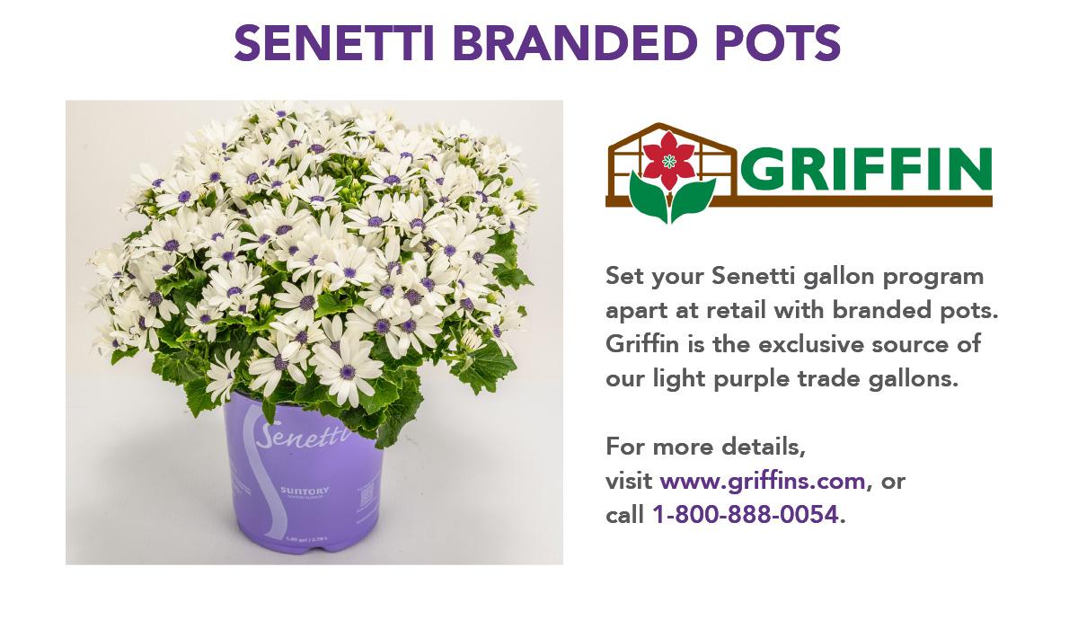 Senetti Branded Pots